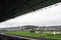 Golden Gate Fields, Albany, CA. 02.15.2014