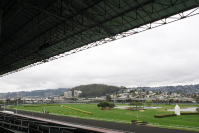 Golden Gate Fields, Albany, CA. 02.15.2014